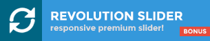 Bonus! Revolution Slider WordPress Plugin